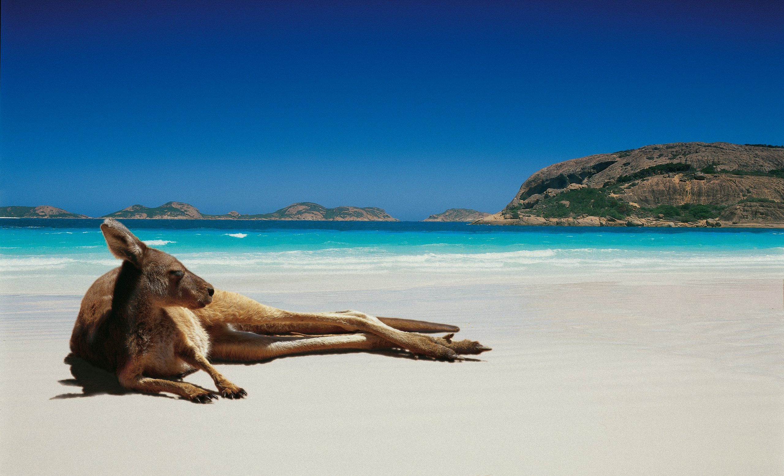 23 Reasons Australia Is The Perfect Place To Stay